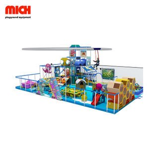 Delicate Kids Indoor Playground with Zipline for Sale
